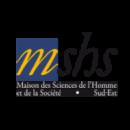 Logo Mshs