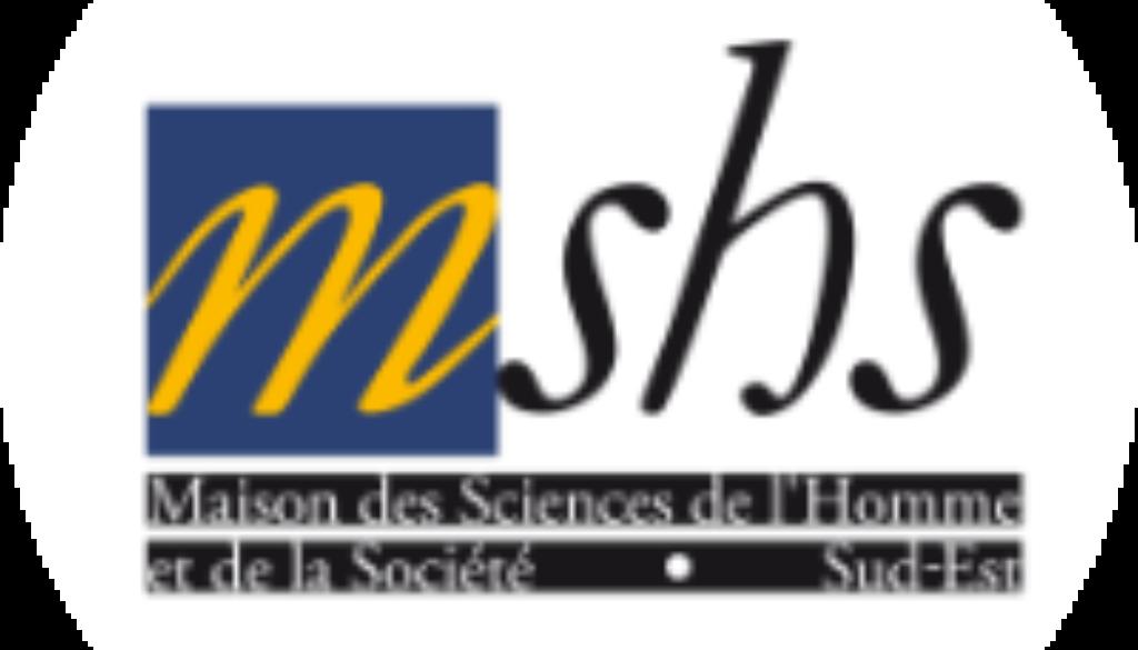 Logo Mshs2