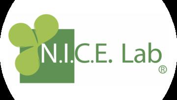 Cropped NICE Lab4