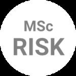 Logo Risk
