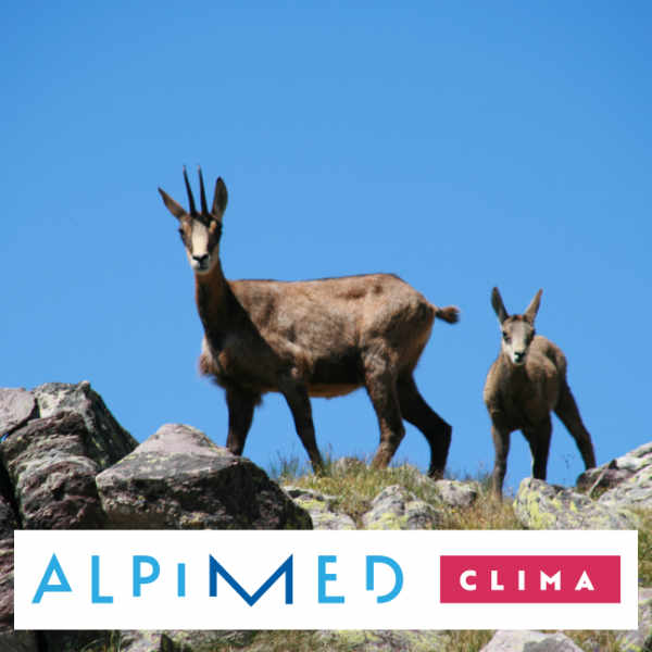 Projet CLIMA - PITER ALPIMED