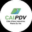 Logo Caipdv